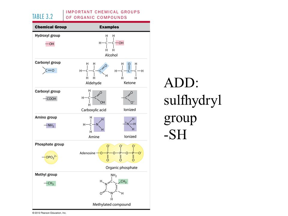 ADD: sulfhydryl group -SH