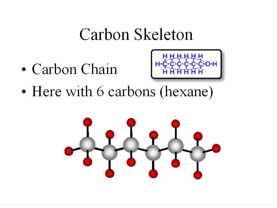 COMMON ELEMENTS OF MACROMOLECULES CHNOPS Carbon – hydrogen- nitrogen-oxygen- phosphorus-sulfur
