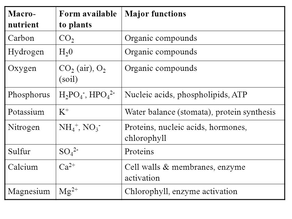 Macro- nutrient Form available to plants Major functions CarbonCO 2 Organic compounds HydrogenH20H20Organic compounds OxygenCO 2 (air), O 2 (soil) Org