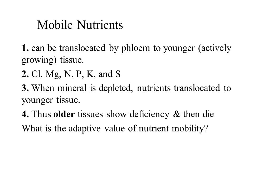 Mobile Nutrients 1. can be translocated by phloem to younger (actively growing) tissue. 2. Cl, Mg, N, P, K, and S 3. When mineral is depleted, nutrien