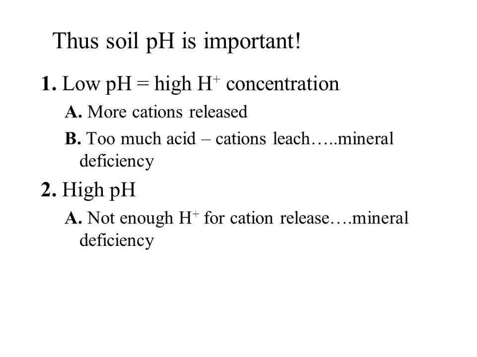 Thus soil pH is important! 1. Low pH = high H + concentration A. More cations released B. Too much acid – cations leach…..mineral deficiency 2. High p