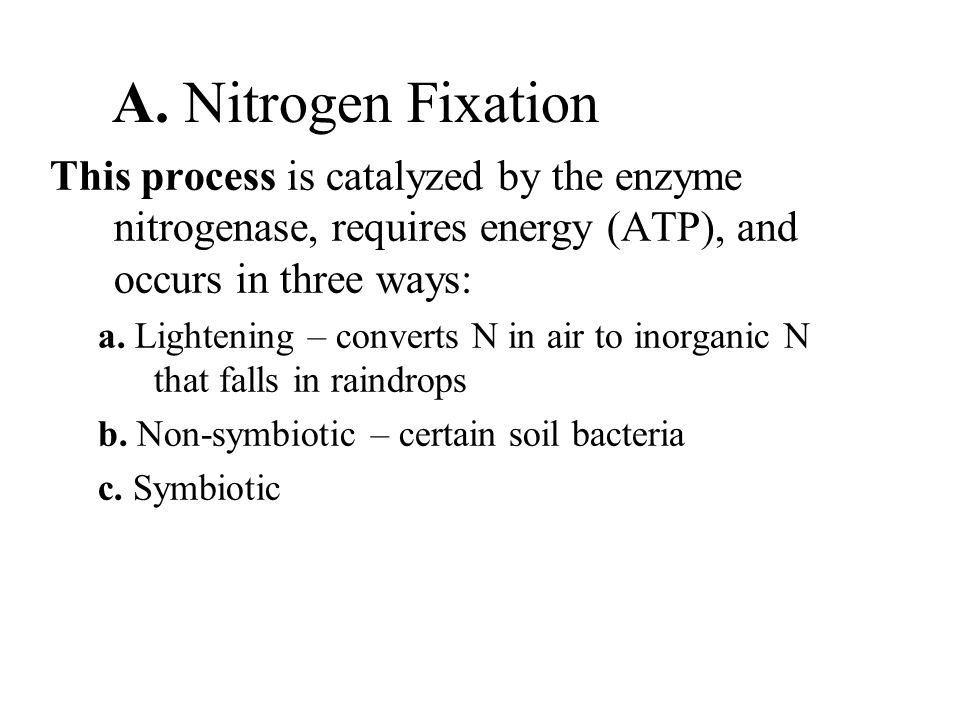 A. Nitrogen Fixation This process is catalyzed by the enzyme nitrogenase, requires energy (ATP), and occurs in three ways: a. Lightening – converts N
