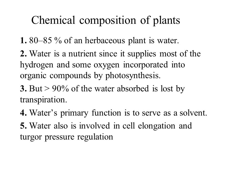 Chemical composition of plants 1. 80–85 % of an herbaceous plant is water. 2. Water is a nutrient since it supplies most of the hydrogen and some oxyg
