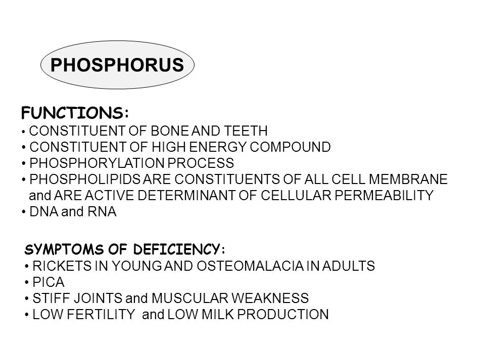 PHOSPHORUS FUNCTIONS: CONSTITUENT OF BONE AND TEETH CONSTITUENT OF HIGH ENERGY COMPOUND PHOSPHORYLATION PROCESS PHOSPHOLIPIDS ARE CONSTITUENTS OF ALL CELL MEMBRANE and ARE ACTIVE DETERMINANT OF CELLULAR PERMEABILITY DNA and RNA SYMPTOMS OF DEFICIENCY: RICKETS IN YOUNG AND OSTEOMALACIA IN ADULTS PICA STIFF JOINTS and MUSCULAR WEAKNESS LOW FERTILITY and LOW MILK PRODUCTION