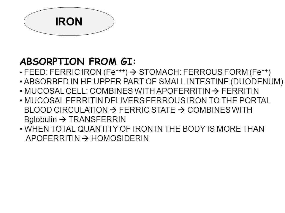 IRON ABSORPTION FROM GI: FEED: FERRIC IRON (Fe +++ )  STOMACH: FERROUS FORM (Fe ++ ) ABSORBED IN HE UPPER PART OF SMALL INTESTINE (DUODENUM) MUCOSAL CELL: COMBINES WITH APOFERRITIN  FERRITIN MUCOSAL FERRITIN DELIVERS FERROUS IRON TO THE PORTAL BLOOD CIRCULATION  FERRIC STATE  COMBINES WITH Βglobulin  TRANSFERRIN WHEN TOTAL QUANTITY OF IRON IN THE BODY IS MORE THAN APOFERRITIN  HOMOSIDERIN