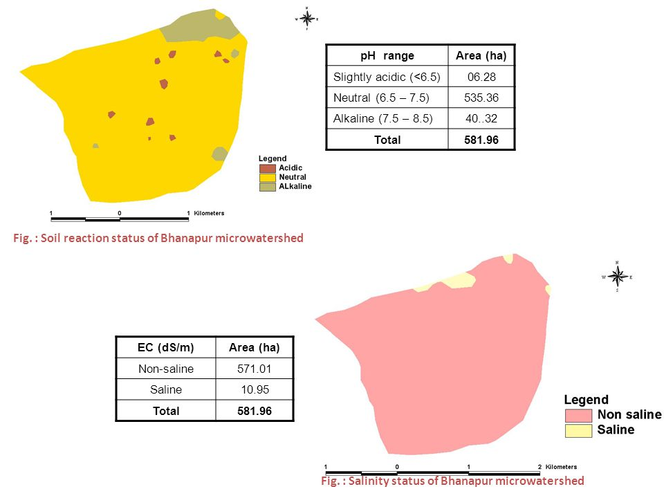 pH rangeArea (ha) Slightly acidic (<6.5)06.28 Neutral (6.5 – 7.5)535.36 Alkaline (7.5 – 8.5)40..32 Total581.96 Fig. : Soil reaction status of Bhanapur