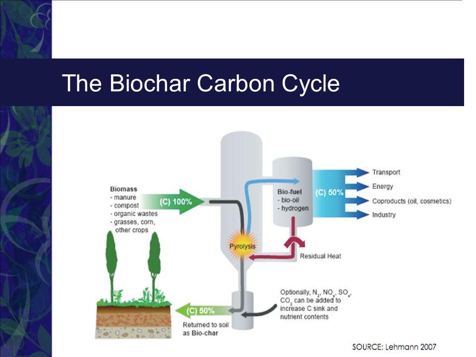 The Biochar Carbon Cycle  Describe your Team