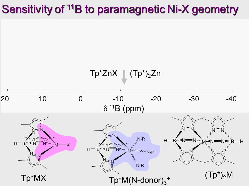 Tp*Ni I Tp*NiBrTp*NiCl Tp*Ni(NCMe) 3 +  11 B (ppm) Tp*Ni I Tp*NiBr Tp*Ni(NCMe) 3 + Tp*ZnX(Tp*) 2 Zn -40-30-20-1001020 (Tp*) 2 Ni Sensitivity of 11 B to paramagnetic Ni-X geometry Tp*NiNO 3 (Tp*) 2 M Tp*M(N-donor) 3 + Tp*MX N N N N B NN H MX N N N N BNNH M N-R N-R N-R