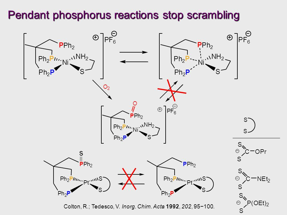 Ni Ph 2 P Ph 2 P NH 2 S P Ph 2 PF 6 O O 2 Pendant phosphorus reactions stop scrambling Pt Ph 2 P Ph 2 P S S P Ph 2 Pt Ph 2 P Ph 2 P S S P Ph 2 Colton, R.; Tedesco, V.