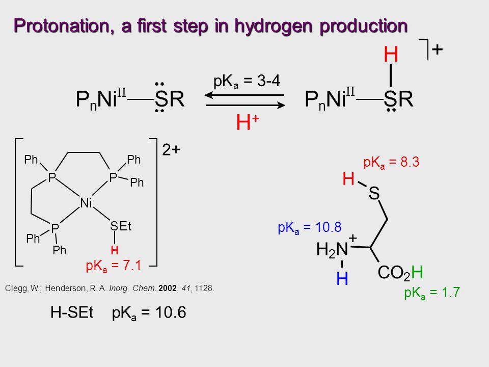 P n Ni II SRP n Ni II SR H + pK a = 3-4 H+H+ Protonation, a first step in hydrogen production pK a = 7.1 2+ Ni P P P SEt Ph Ph Ph Ph Ph H Clegg, W.; Henderson, R.