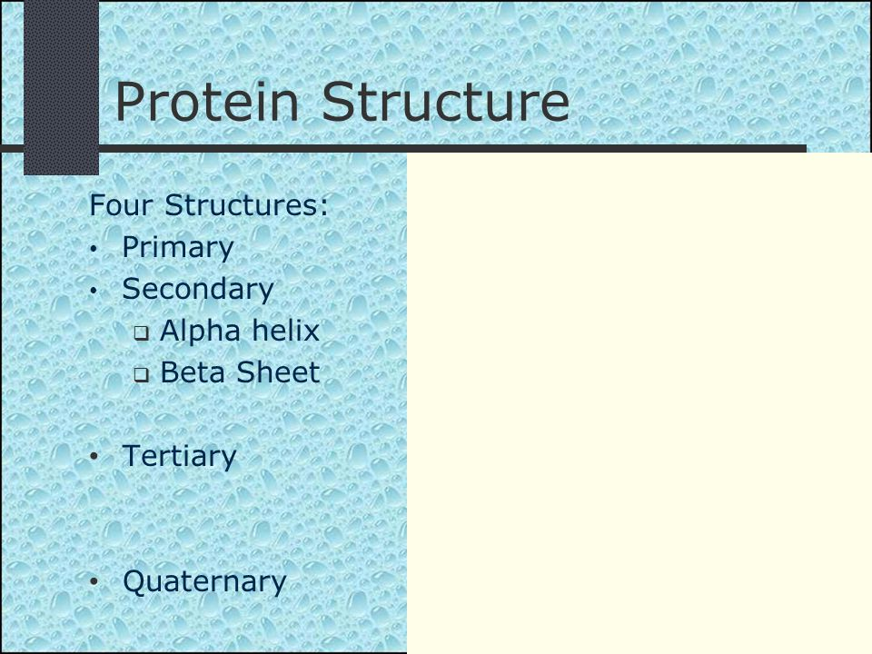 Four Structures: Primary Secondary  Alpha helix  Beta Sheet Tertiary Quaternary Protein Structure