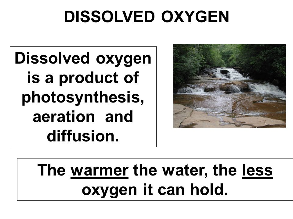 DISSOLVED OXYGEN Dissolved oxygen is a product of photosynthesis, aeration and diffusion. The warmer the water, the less oxygen it can hold.