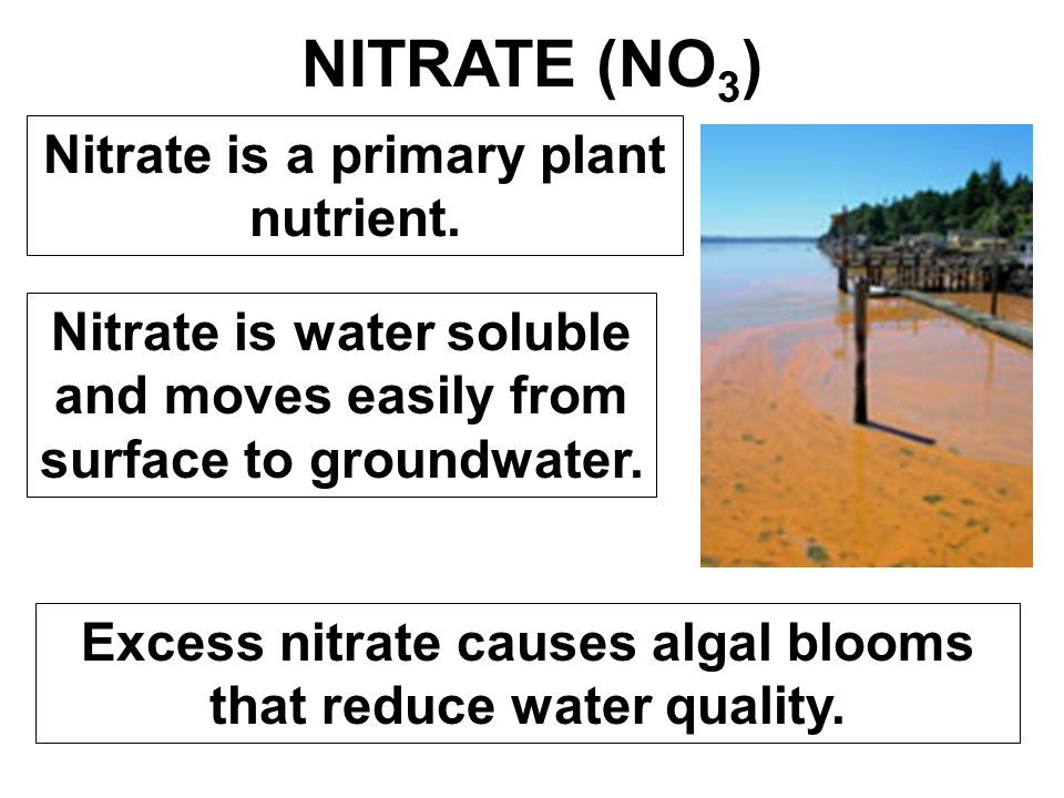 NITRATE (NO 3 ) Nitrate is a primary plant nutrient. Nitrate is water soluble and moves easily from surface to groundwater. Excess nitrate causes alga