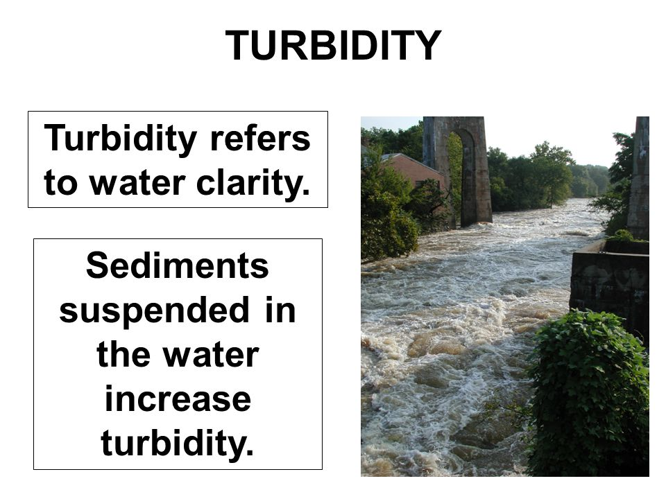 TURBIDITY Turbidity refers to water clarity. Sediments suspended in the water increase turbidity.