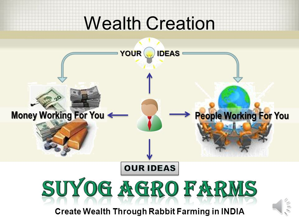 How to Create Wealth EMPLOYEES SELF EMPLOYED BUSINESS OWNER INVESTORS Create Wealth Through Rabbit Farming in INDIA I am looking for a secure job and a steady paycheck.