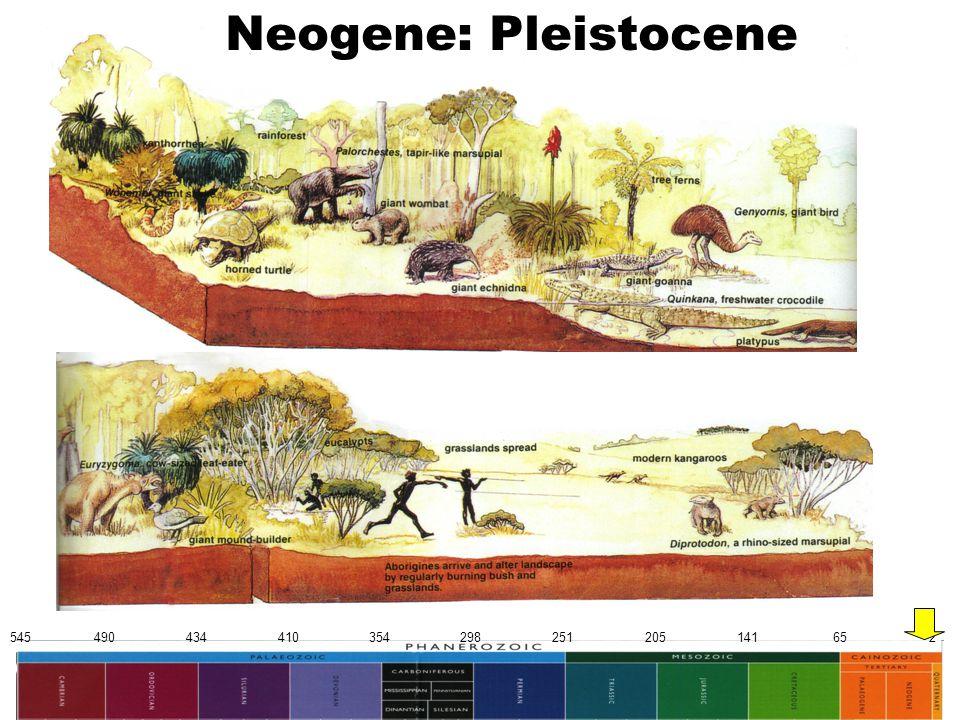 545 490 434 410 354 298 251 205 141 65 2 Neogene: Pleistocene