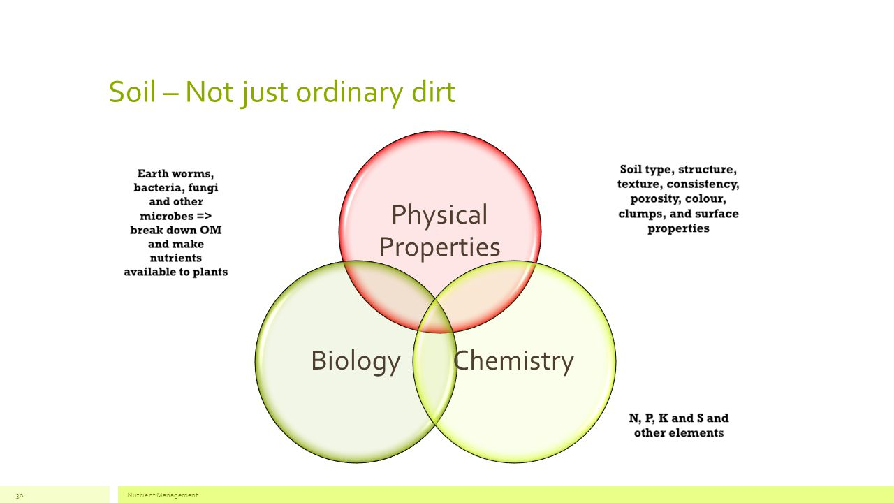 Soil – Not just ordinary dirt Nutrient Management30 Physical Properties BiologyChemistry
