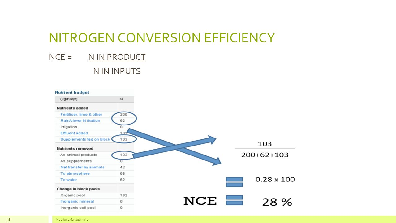 NITROGEN CONVERSION EFFICIENCY NCE = N IN PRODUCT N IN INPUTS Nutrient Management38