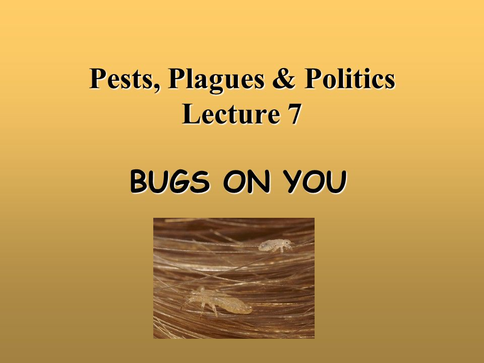 Key Points Bugs Living on You Historical Perspective Obligate Parasites –3 Types of Lice –Biology and control Facultative Parasites –Human Flea, Bot Fly, Sand Fleas –Bed Bugs