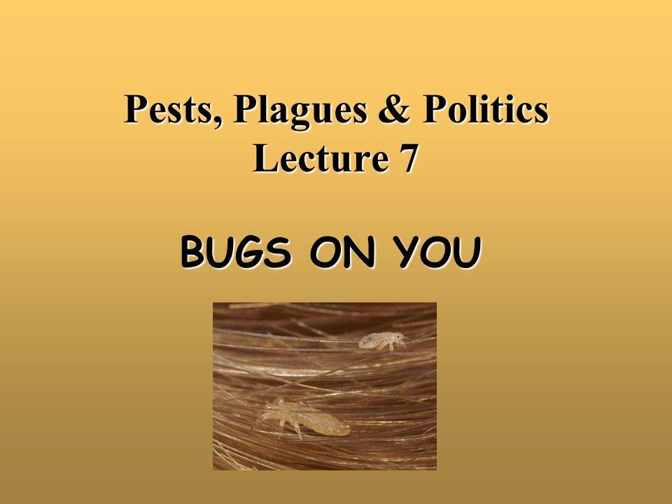 The Human Flea Numerous species of fleas will feed on human blood.