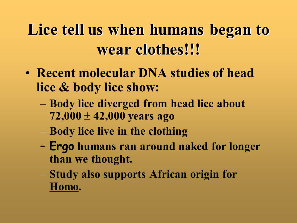Lice tell us when humans began to wear clothes!!! Recent molecular DNA studies of head lice & body lice show: –Body lice diverged from head lice about