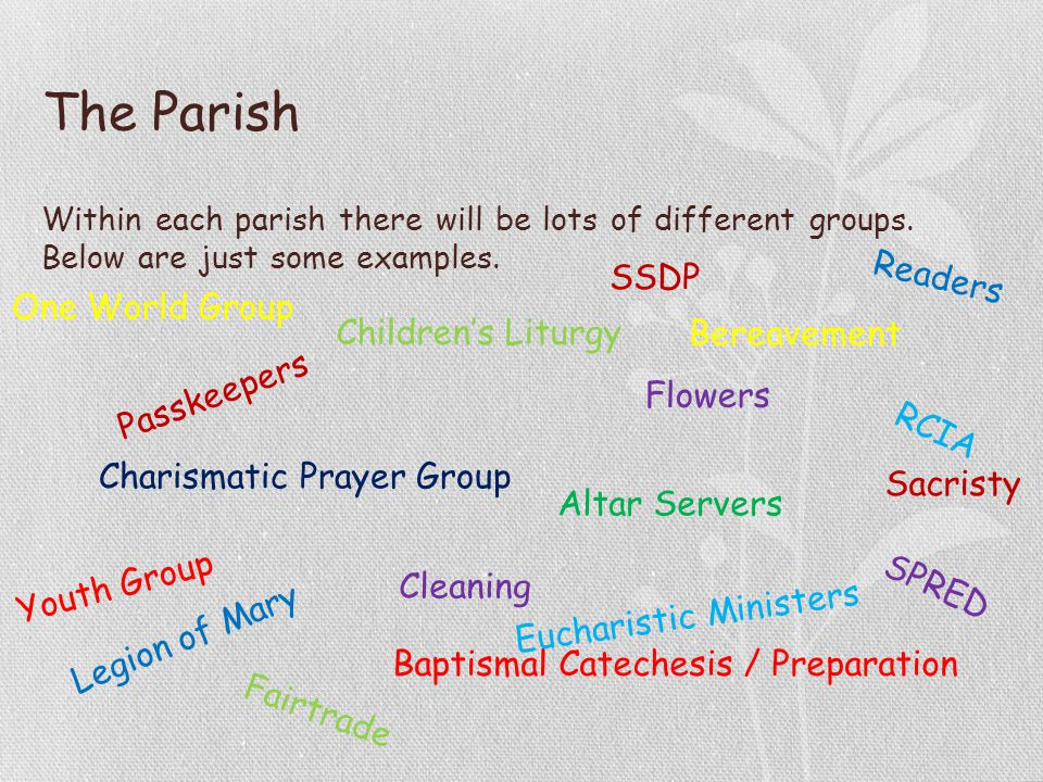 Within each parish there will be lots of different groups.