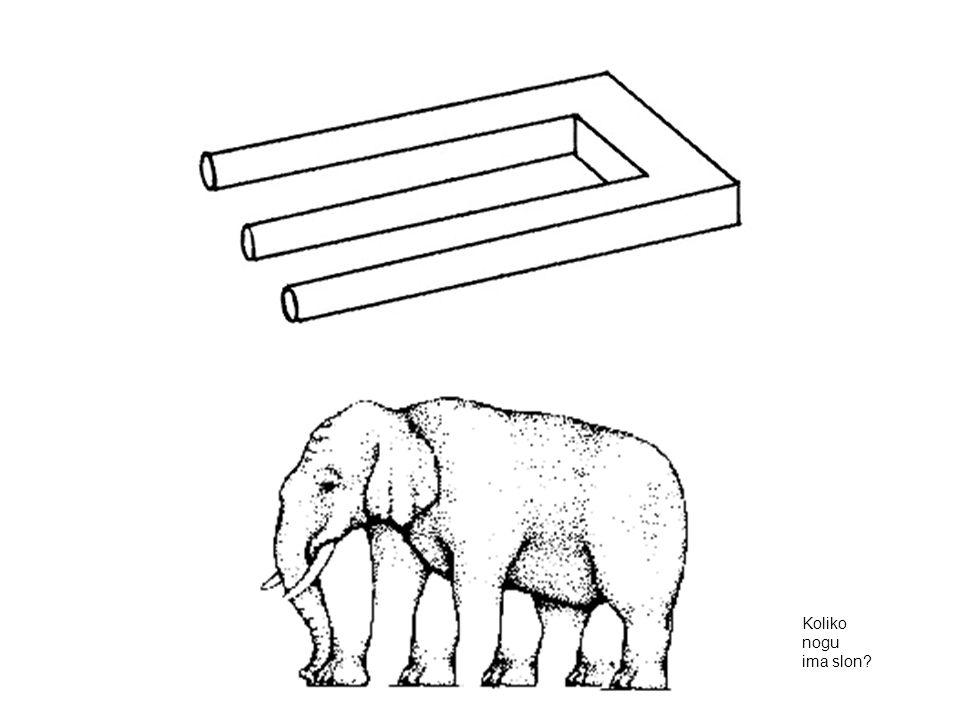 Koliko nogu ima slon?