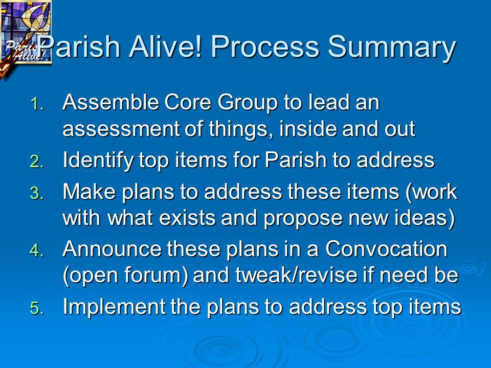 Parish Alive. Process Summary 1.