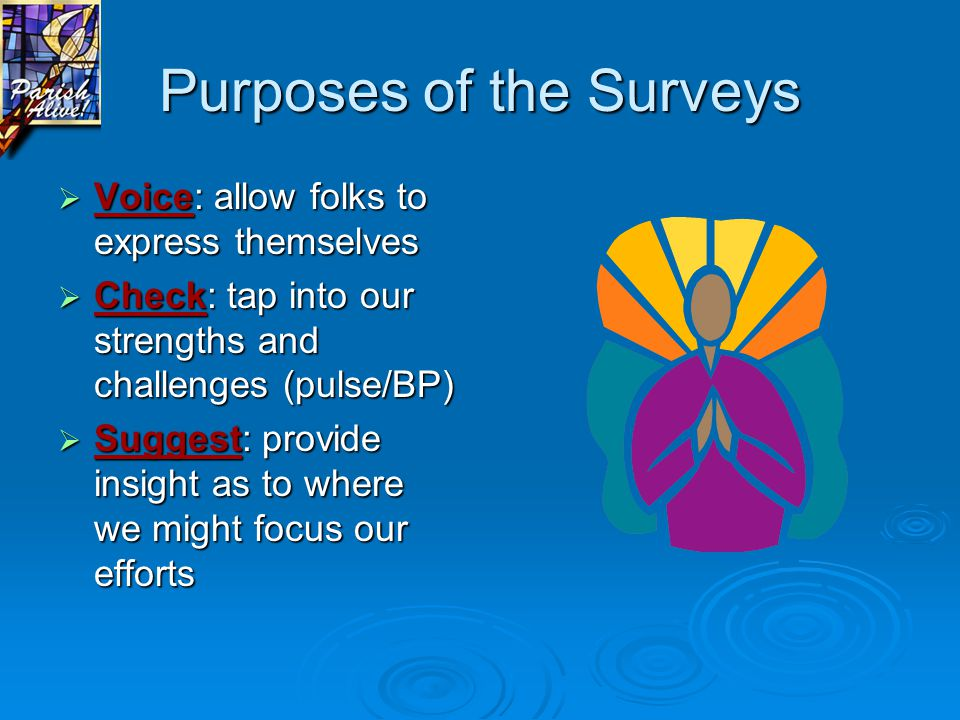 Purposes of the Surveys  Voice: allow folks to express themselves  Check: tap into our strengths and challenges (pulse/BP)  Suggest: provide insight as to where we might focus our efforts