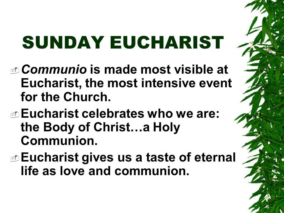 SUNDAY EUCHARIST  Communio is made most visible at Eucharist, the most intensive event for the Church.