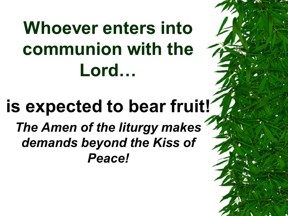 Whoever enters into communion with the Lord… is expected to bear fruit.