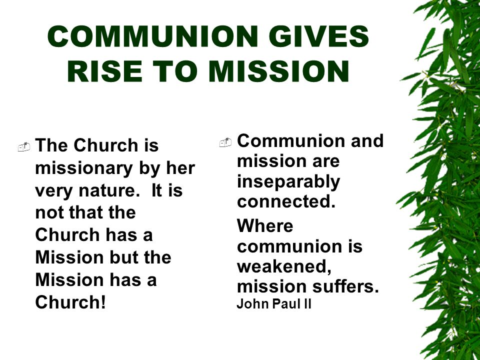 COMMUNION GIVES RISE TO MISSION  The Church is missionary by her very nature.