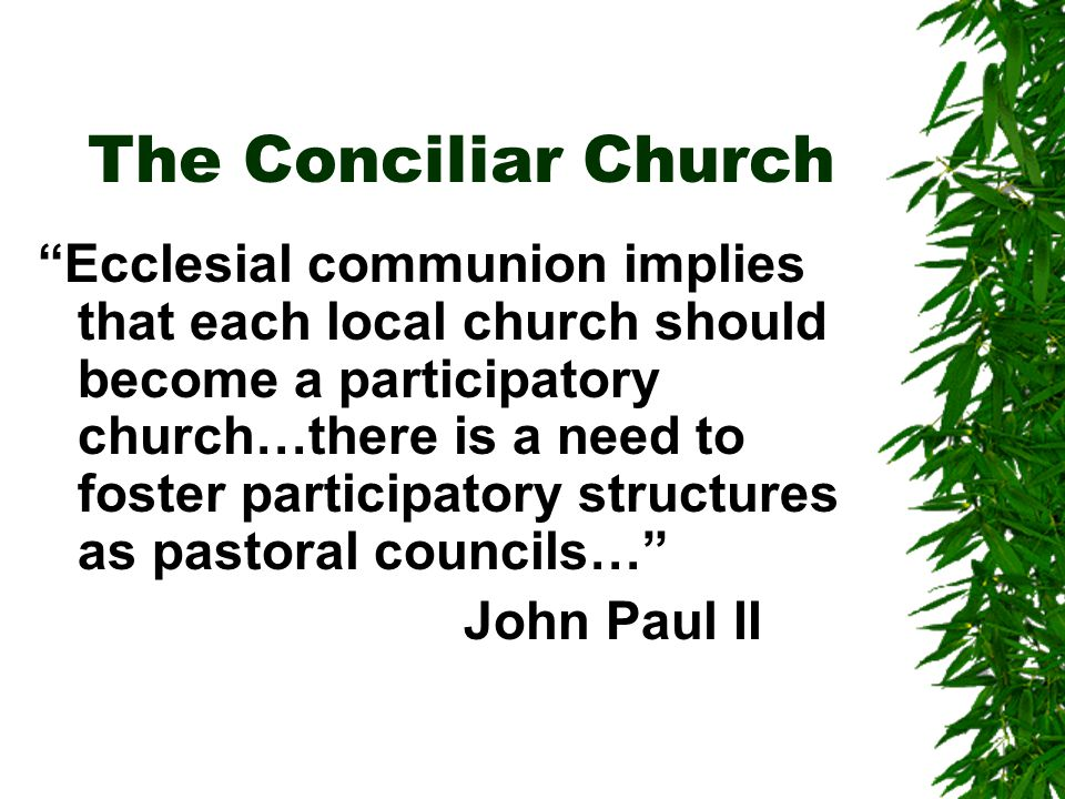 The Conciliar Church Ecclesial communion implies that each local church should become a participatory church…there is a need to foster participatory structures as pastoral councils… John Paul II