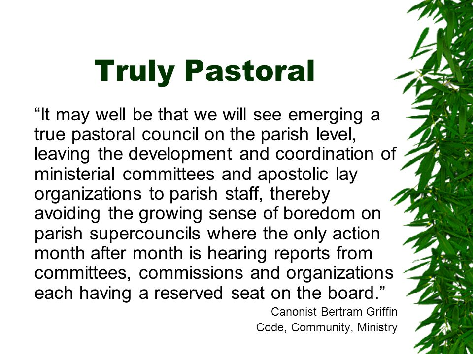Truly Pastoral It may well be that we will see emerging a true pastoral council on the parish level, leaving the development and coordination of ministerial committees and apostolic lay organizations to parish staff, thereby avoiding the growing sense of boredom on parish supercouncils where the only action month after month is hearing reports from committees, commissions and organizations each having a reserved seat on the board. Canonist Bertram Griffin Code, Community, Ministry
