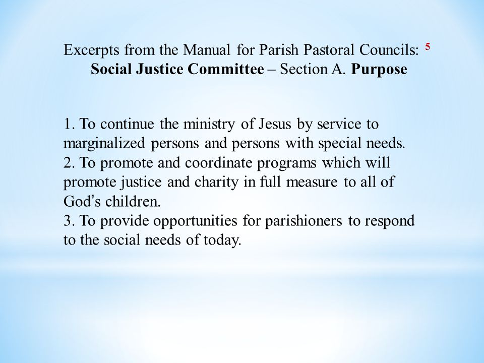 Excerpts from the Manual for Parish Pastoral Councils: 5 Social Justice Committee – Section A.