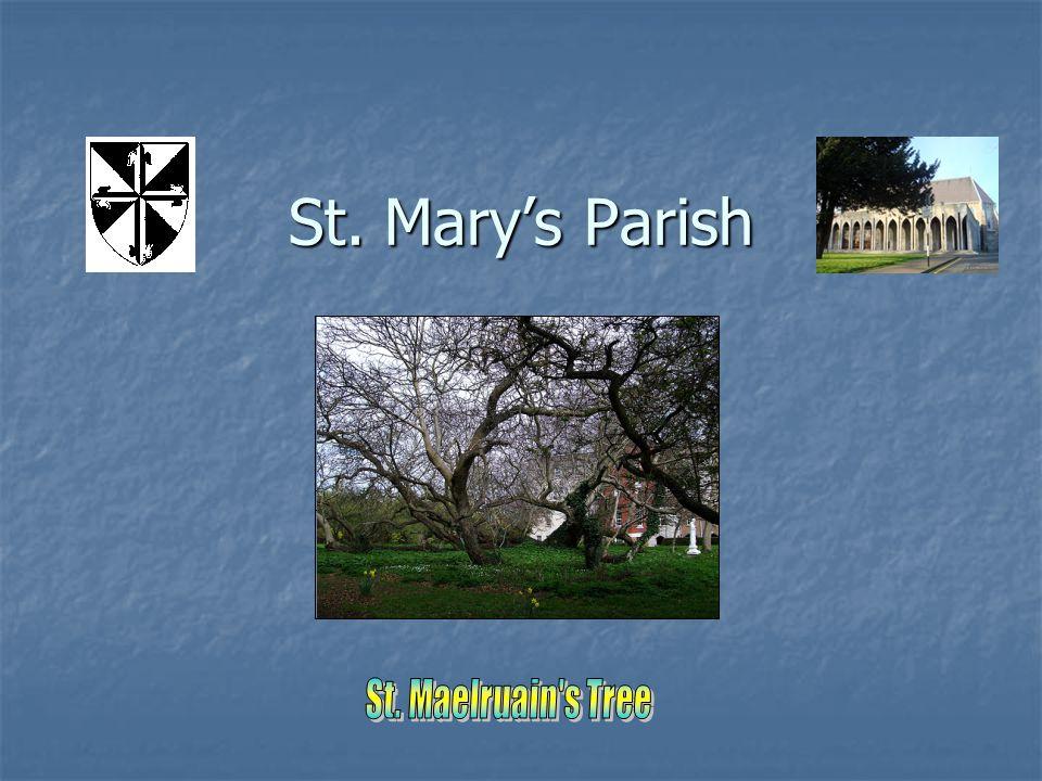 Tallaght www.stmarys-tallaght.ie Phone: 01 4048100 E-mail: parish@stmarys-tallaght.ie