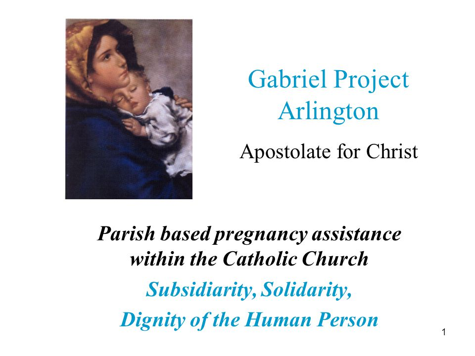 12 The Gabriel Project Pregnant? Need help? 1-866-444-3553 Diocese of Arlington Family Life