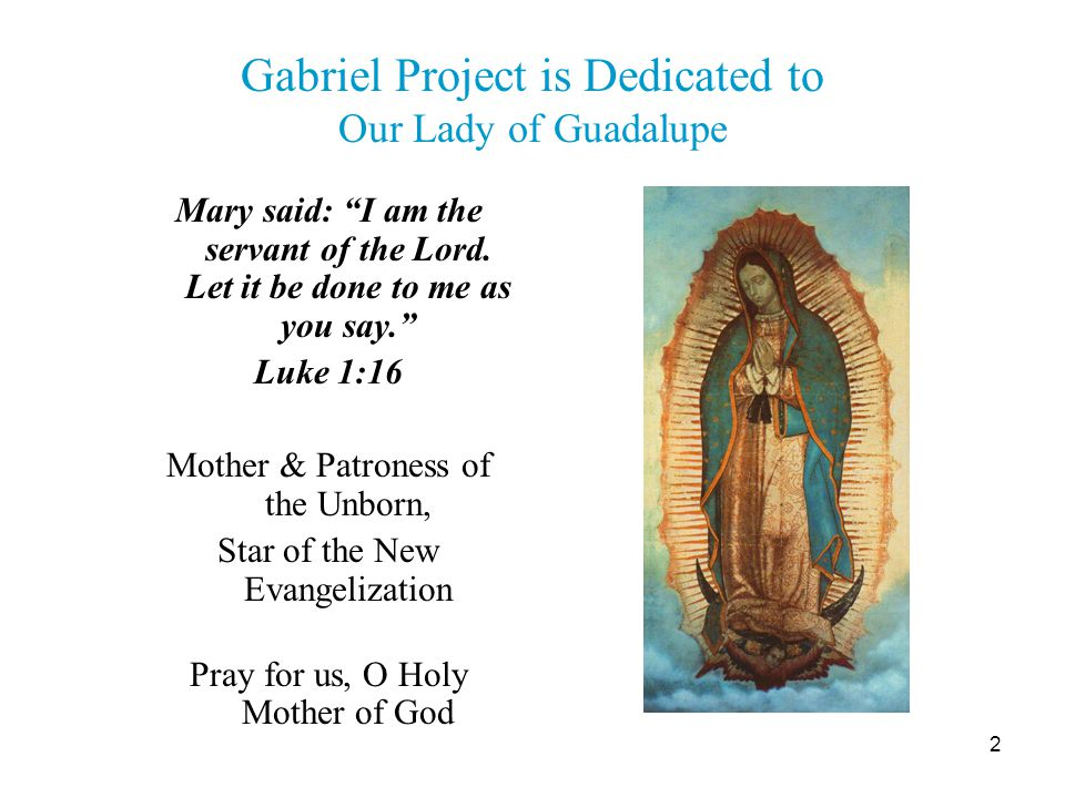 3 Charism of the Gabriel Project Following Roe v.Wade 1973, the Rev.