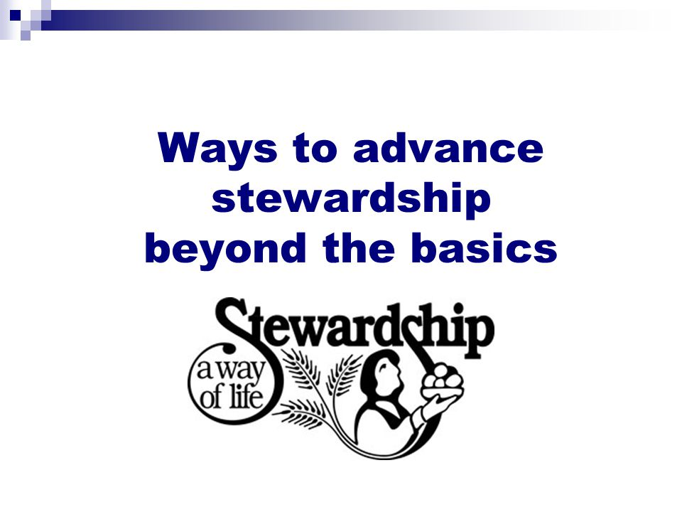 Ways to advance stewardship beyond the basics
