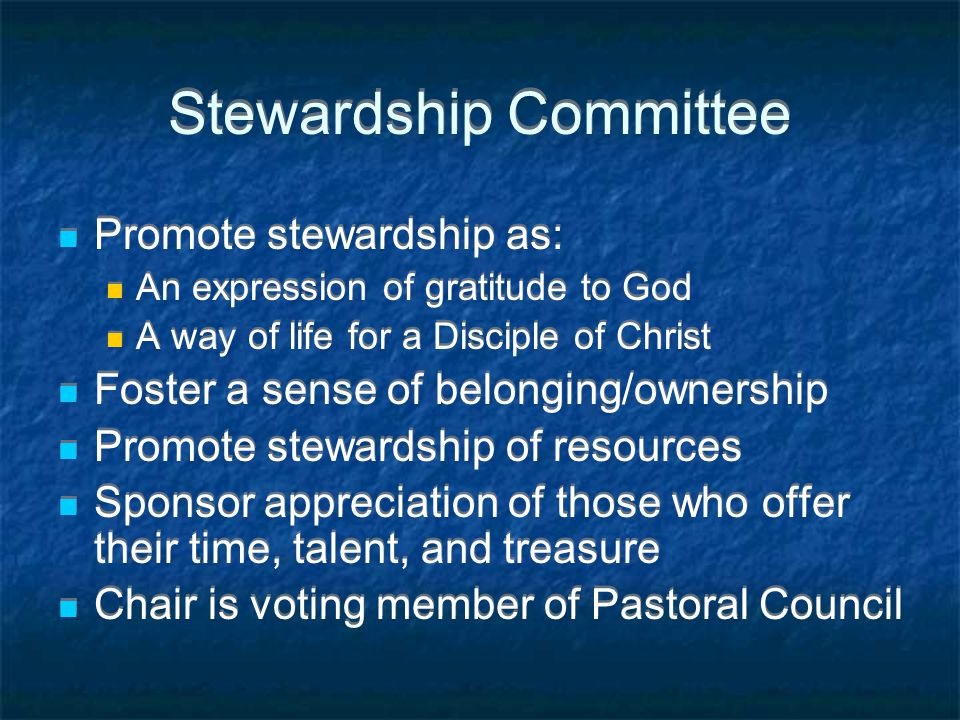 Stewardship Committee Promote stewardship as: An expression of gratitude to God A way of life for a Disciple of Christ Foster a sense of belonging/ownership Promote stewardship of resources Sponsor appreciation of those who offer their time, talent, and treasure Chair is voting member of Pastoral Council Promote stewardship as: An expression of gratitude to God A way of life for a Disciple of Christ Foster a sense of belonging/ownership Promote stewardship of resources Sponsor appreciation of those who offer their time, talent, and treasure Chair is voting member of Pastoral Council
