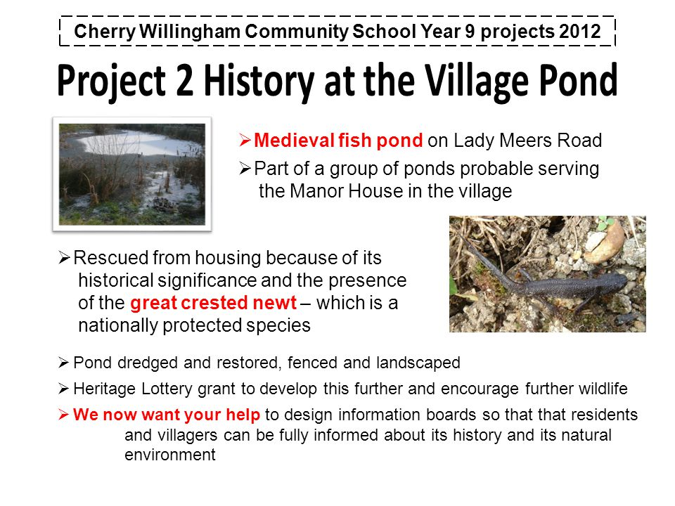 Cherry Willingham Community School Year 9 projects 2012  Medieval fish pond on Lady Meers Road  Part of a group of ponds probable serving the Manor House in the village  Rescued from housing because of its historical significance and the presence of the great crested newt – which is a nationally protected species  Pond dredged and restored, fenced and landscaped  Heritage Lottery grant to develop this further and encourage further wildlife  We now want your help to design information boards so that that residents and villagers can be fully informed about its history and its natural environment