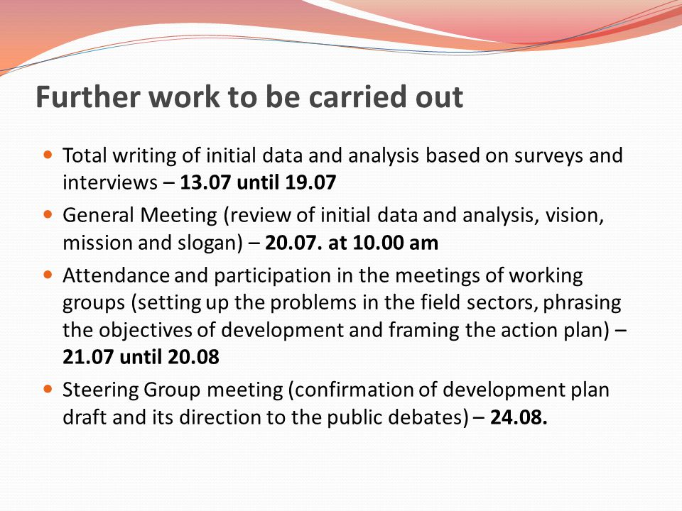 Further work to be carried out Total writing of initial data and analysis based on surveys and interviews – 13.07 until 19.07 General Meeting (review of initial data and analysis, vision, mission and slogan) – 20.07.