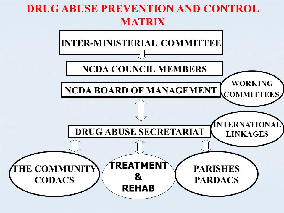 DRUG ABUSE PREVENTION AND CONTROL MATRIX INTER-MINISTERIAL COMMITTEE NCDA COUNCIL MEMBERS NCDA BOARD OF MANAGEMENT DRUG ABUSE SECRETARIAT WORKING COMM
