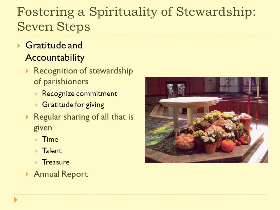 Fostering a Spirituality of Stewardship: Seven Steps  Gratitude and Accountability  Recognition of stewardship of parishioners  Recognize commitment  Gratitude for giving  Regular sharing of all that is given  Time  Talent  Treasure  Annual Report