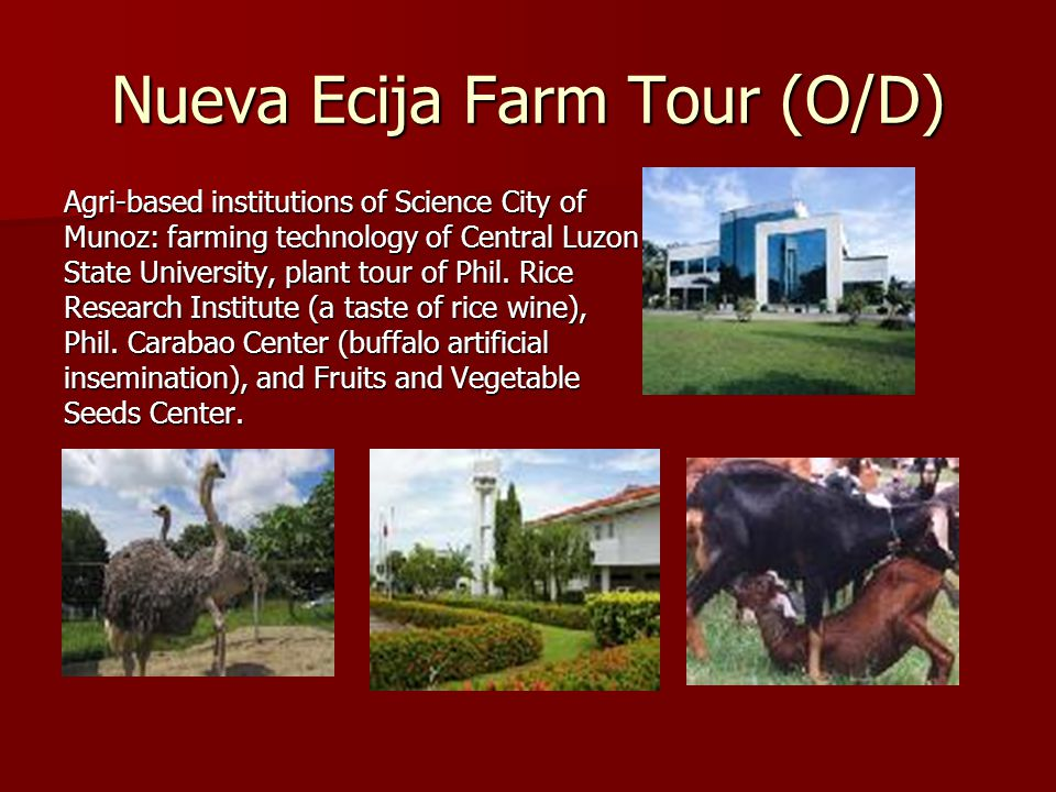 Nueva Ecija Farm Tour (O/D) Agri-based institutions of Science City of Munoz: farming technology of Central Luzon State University, plant tour of Phil.