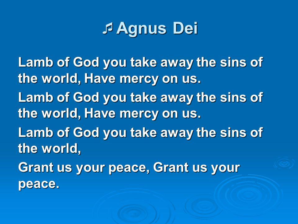  Agnus Dei Lamb of God you take away the sins of the world, Have mercy on us. Lamb of God you take away the sins of the world, Grant us your peace, G