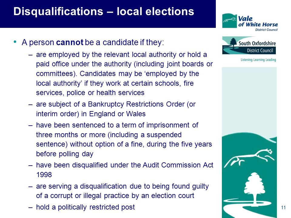 Disqualifications – local elections A person cannot be a candidate if they: –are employed by the relevant local authority or hold a paid office under the authority (including joint boards or committees).