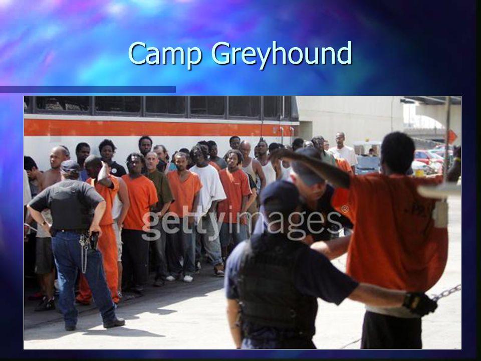 Camp Greyhound