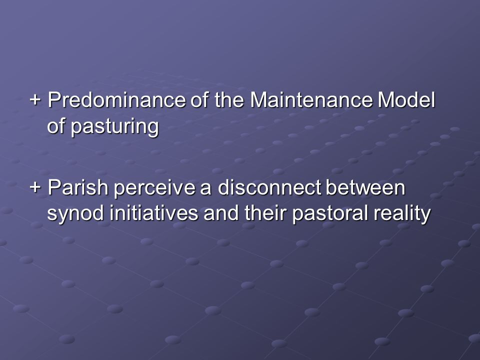 + Predominance of the Maintenance Model of pasturing + Parish perceive a disconnect between synod initiatives and their pastoral reality