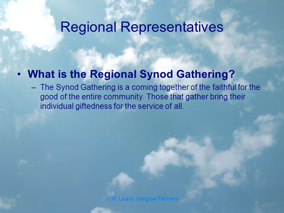 Regional Representatives What is the Regional Synod Gathering.
